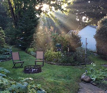 morning-light-2372625_1920.jpg