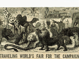 Barnum, Exotic, and Sea World, Oh My