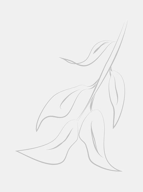 website background leaf-3.jpg
