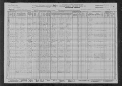 EJ Moses Census Record