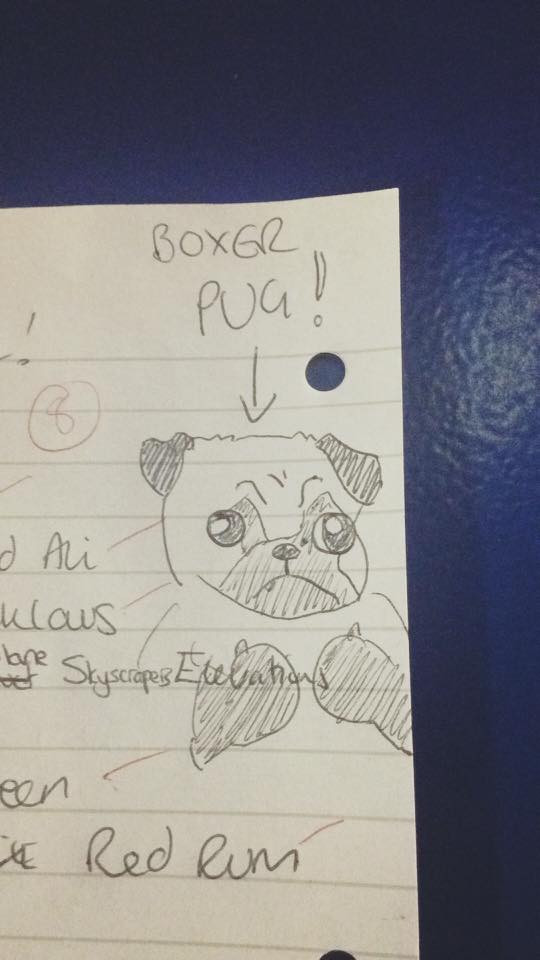 Boxer Pug from the Bonnington