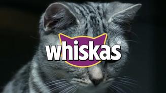 Whiskas® - Lâmpada