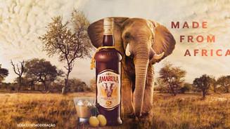 Amarula - The Spirit Of Africa