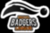 Bristol Badgers logo.png