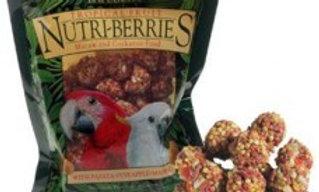 Tropical Nutri-Berries Macaw