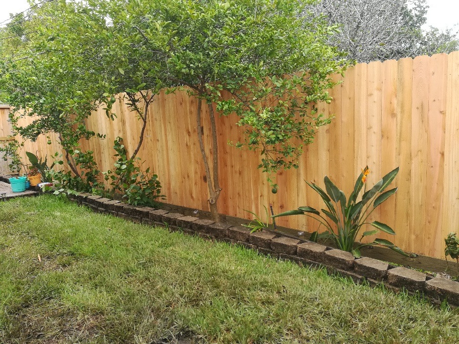 Backyard Fence.jpg