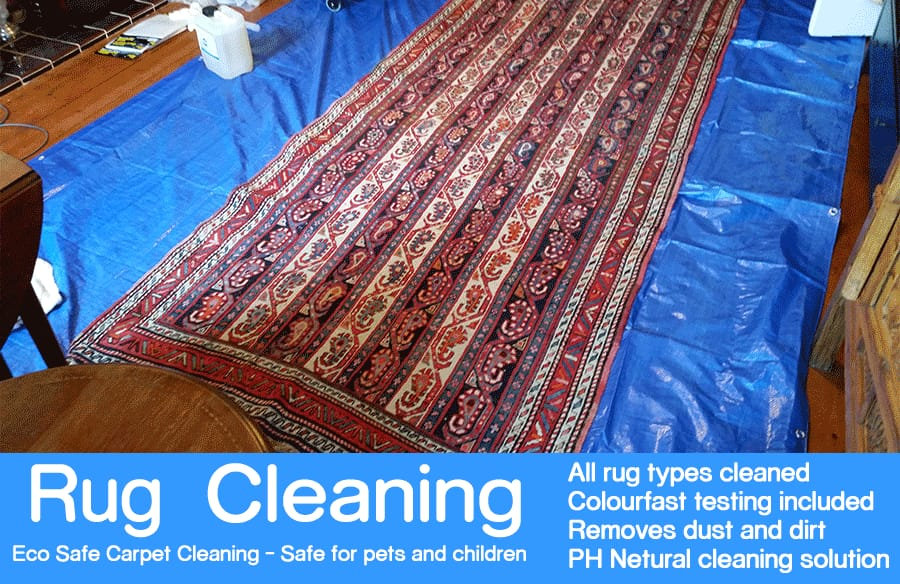 pick up/drop off rug cleaning