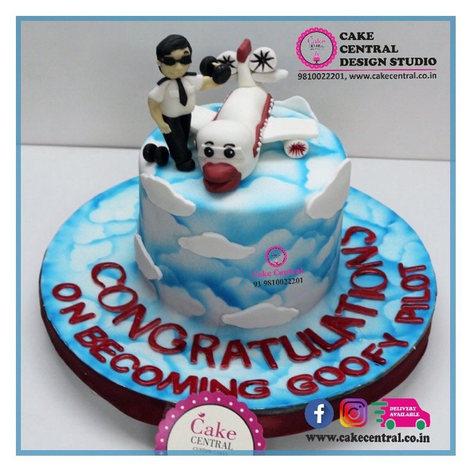 Pilot Airplane Cake Delhi