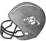 hb-helmet-shade.jpg