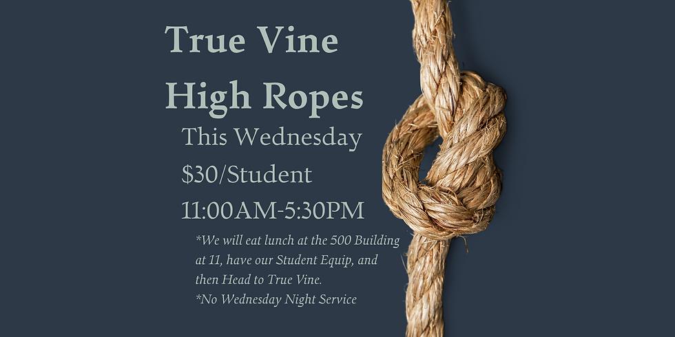 True Vine High Ropes Course