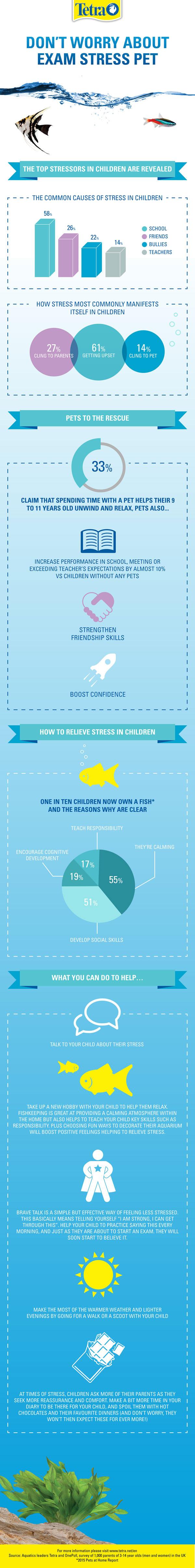 Tetra Infographic