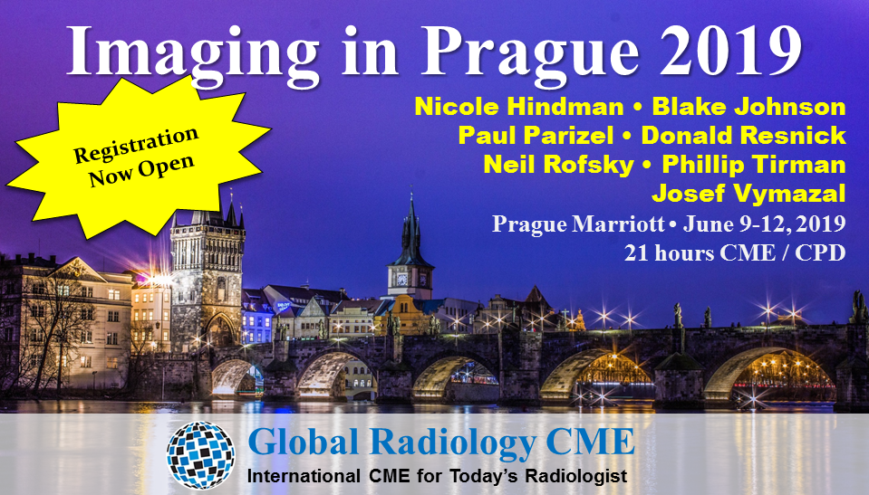 Imaging in Prague Banner Alpha Registrat