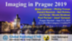 Imaging in Prague 2019 Radiology CME in Czech Republic