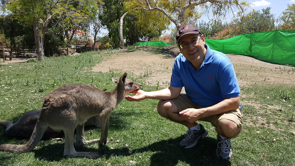Feeding a Kangaroo at Gan Garoo - Photo by Natalie Rice