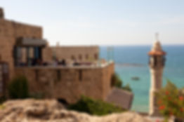 Jaffa view to the sea - Radiology International CME
