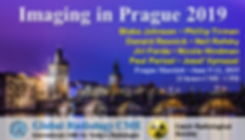 Imaging in Prague Banner2.png
