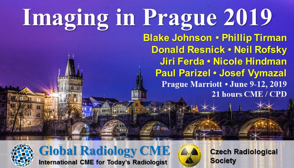 Imaging in Prague Banner2.png