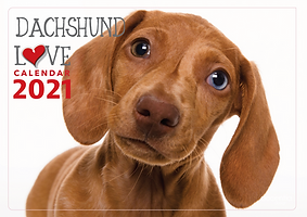 Dachshund-love-front-small.png
