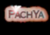 Logo PachYa2019.png
