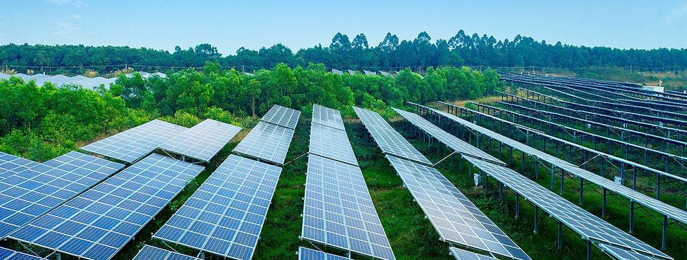 Linum Tech Solar Panels.jpg