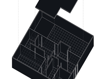 """ALMOST NOTHING Mies Van Der Rohe and his """"Three courtyards house"""""""