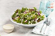V400 Ranch Salad 1.png