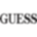 guess (1).png