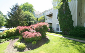 SOLD - 7781 WILLOW POINT DR #7781, FALLS CHURCH, VA 22042