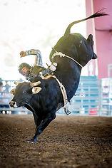 Norco Horseweek Sponsors 2017