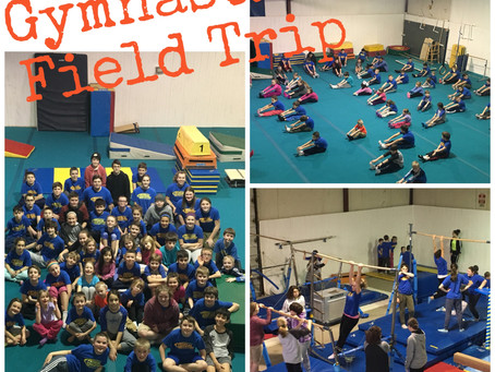 Gymnastics Field Trip