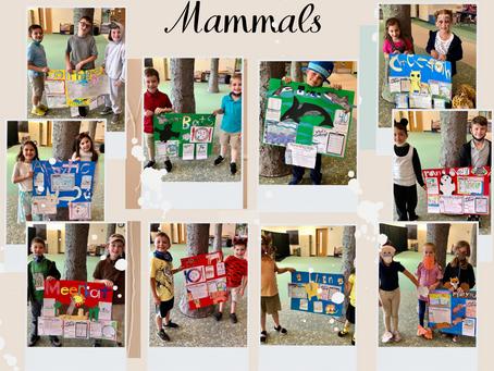 Mammal Experts