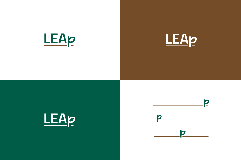 Leap03-01-01.png