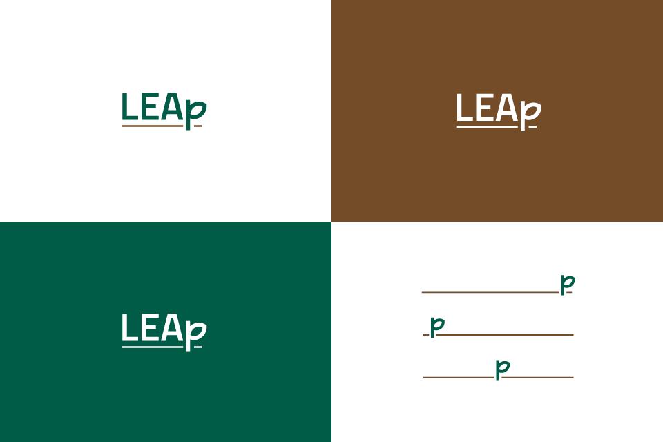 Leap03-01-01.png