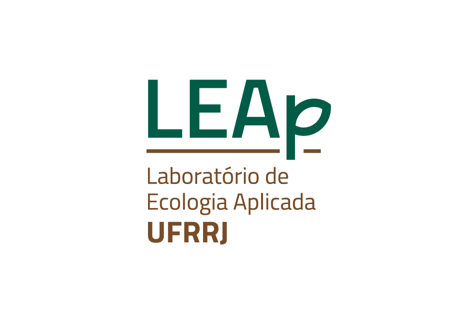 Leap02.png