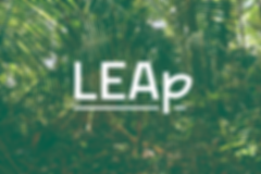 Leap04.png