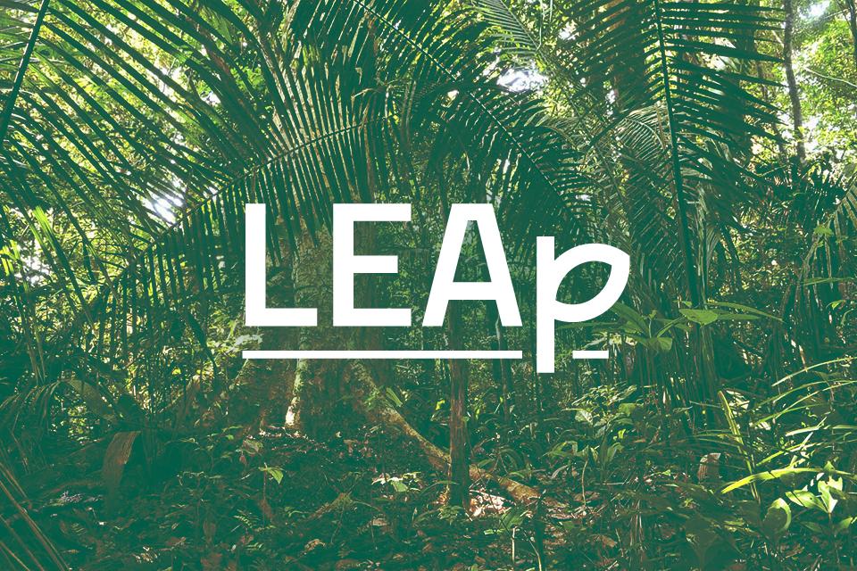 Leap04.png