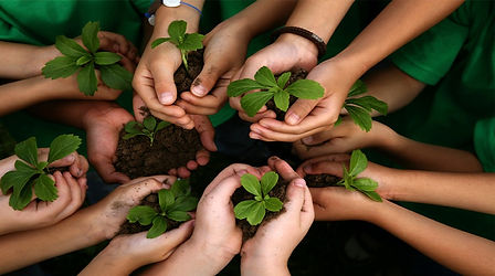 kids-hands-holding-plants_blog_edited.jp