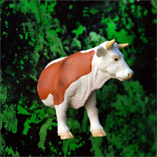 Au commencement était la vache...