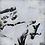 Thumbnail: TURBULENCES XS #006