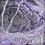 Thumbnail: TURBULENCES XS #003