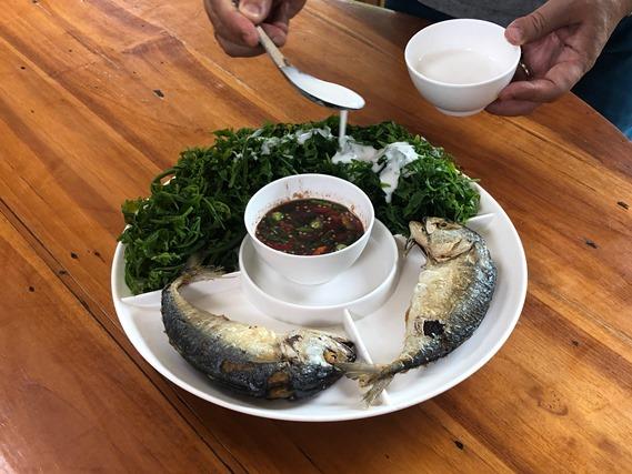 02 ชุดผักกูดกะทิและน้ำพริกกะปิ