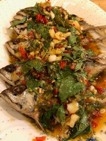 19 ปลาทูราดซอส