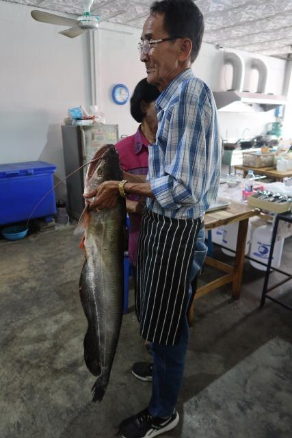 17 ขนาดปลาที่เลือกนำมาทำอาหาร