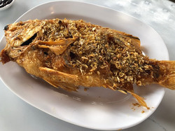12 ปลาทับทิมทอดกระเทียม