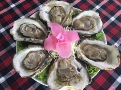 04 หอยนางรม