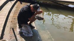 19 ปล่อยปลาที่ท่าน้ำ