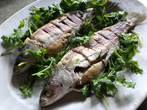 05 ปลากระบอกแช่เย็น