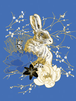 Rabbit & Blue