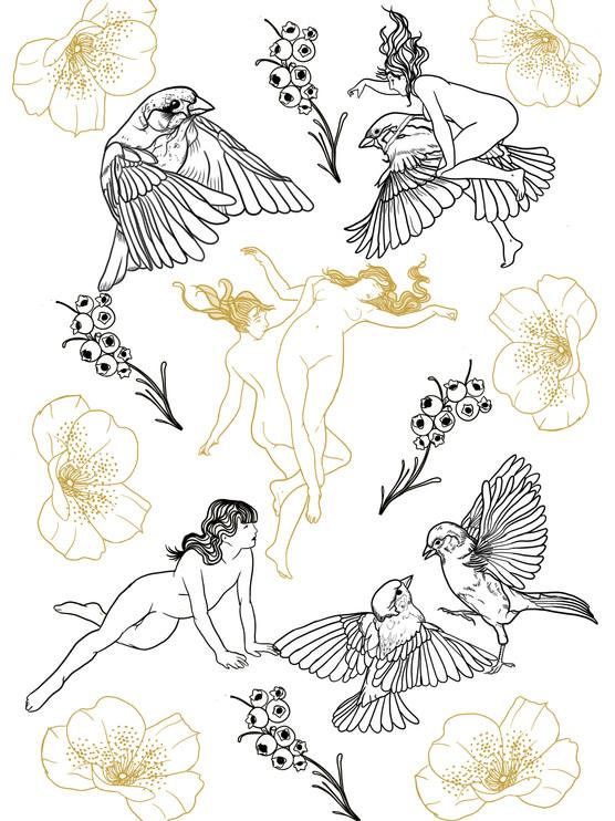 Witches & Birds