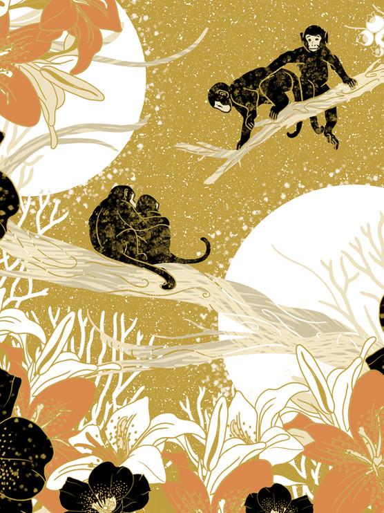 Monkeys & Jungle